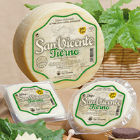 Cheese San Vicente