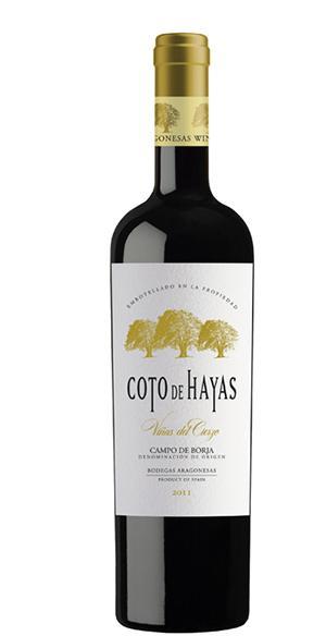 Coto de Hayas Viñas del Cierzo Reserva